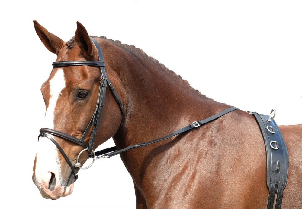 Side reins/grass reins
