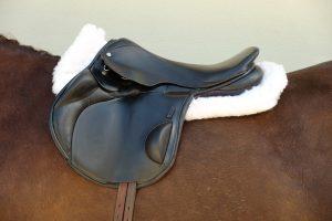 Fully Lined Saddle Pad