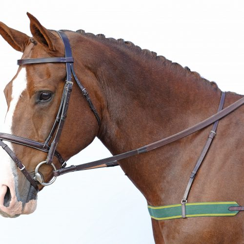 Breastplates and martingales