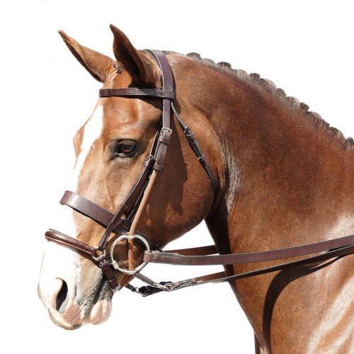 Horse Wear