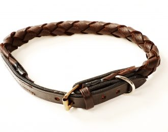 Plaited Dog Collar