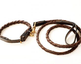 Plaited Dog Collar and Lead