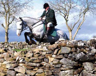 The Irish Hunter
