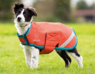 Digby & Fox Waterproof Coat