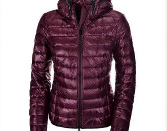 Ilvy Ladies Jacket